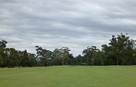 메트로폴리탄 골프 클럽